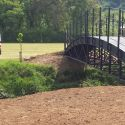 newton bridge.jpg