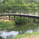 newton bridge 3.jpg