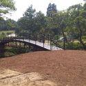 newton bridge 4.jpg
